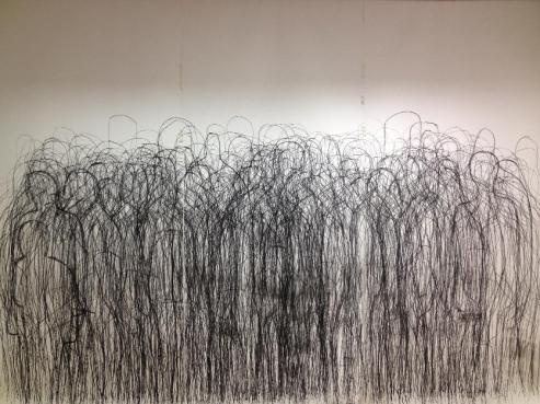 Crowded Room Edenderry, 2012, conté on paper, 240 x 360