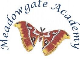 meadowgate academy logo (2)